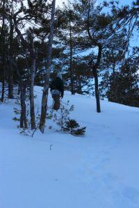 cutting trail up the ledges