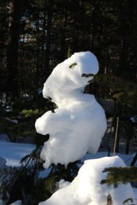 snow tree creature