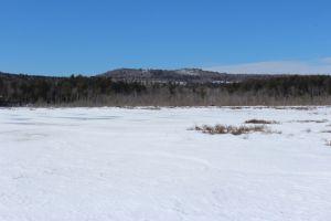 Holt Pond 1