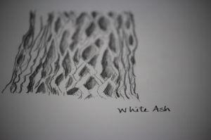 white ash sketch