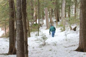 Allen-snow