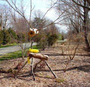 critter on bike path