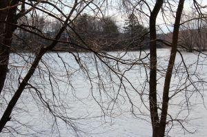 start of Sandy River