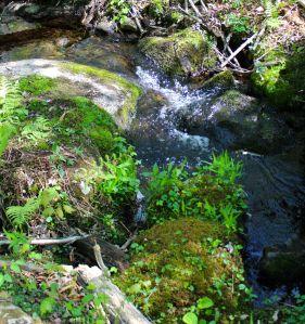 bridge 2 rock garden