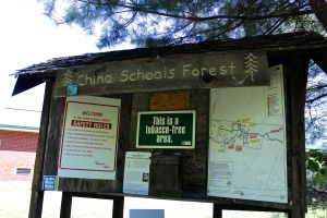 China Schools Forest
