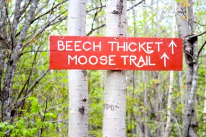 Moose Trail sign
