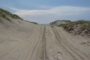 over the dune