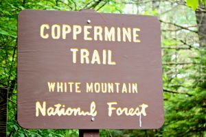 Coppermine Trail