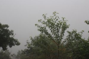 Ledges in fog