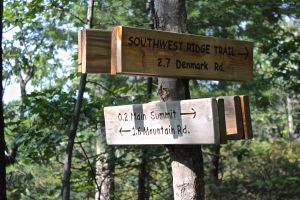 trail signs heading down