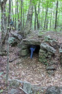 root cellar 2