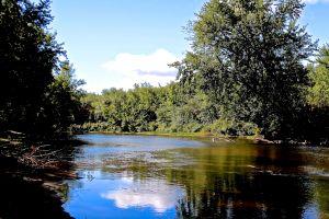 Saco River 3