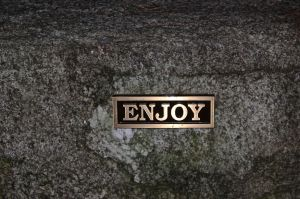 sometimes even the stones speak--enjoy