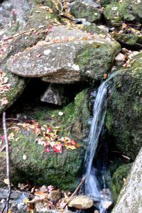 Bald Peak trail stream