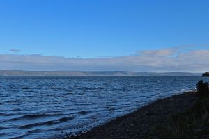 Bras D'or2