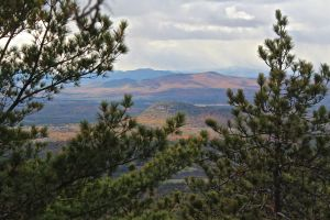 North Ridge summit view