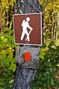 selfie hiker