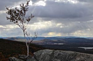 summit view 4
