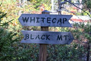 whitecap:black sign