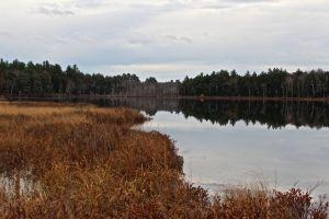 Holt Pond