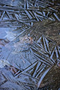 ice puddle abstract art