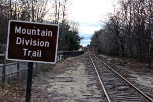 MTD tracks and trail