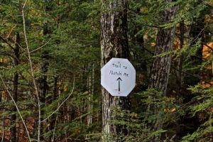 Notch sign