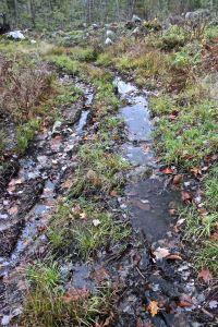Notch trail wet