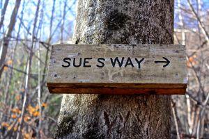 Sue's sign