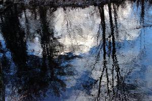 brook reflection