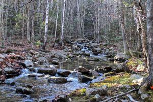 Red Rock Brook