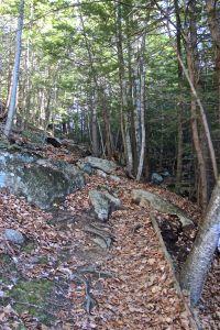 up the ravine