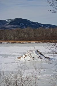 beaver view