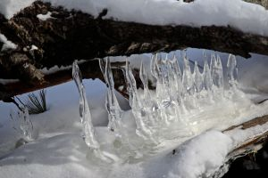 ice twists 2