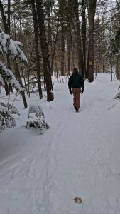 Pudding Trail