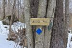 ledges sign