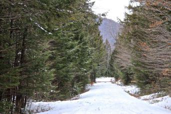 Peaked Hill Road