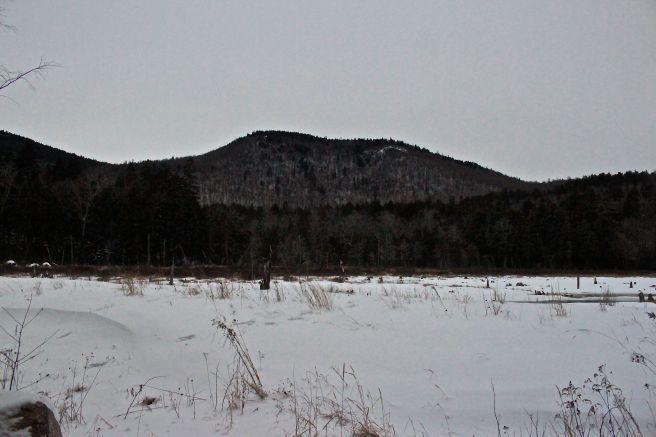 Province Pond1