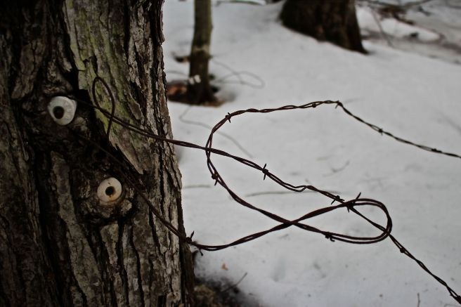 r-barbed wire
