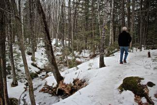 R-woodland trail