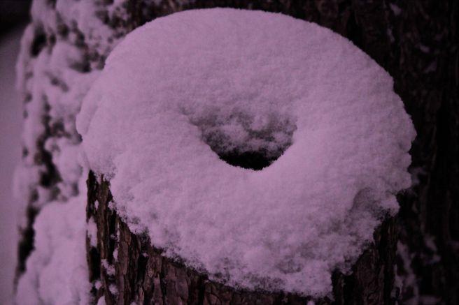 snow doughnut