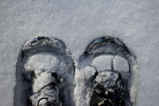 W-snowshoes