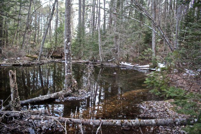 b-mill pond