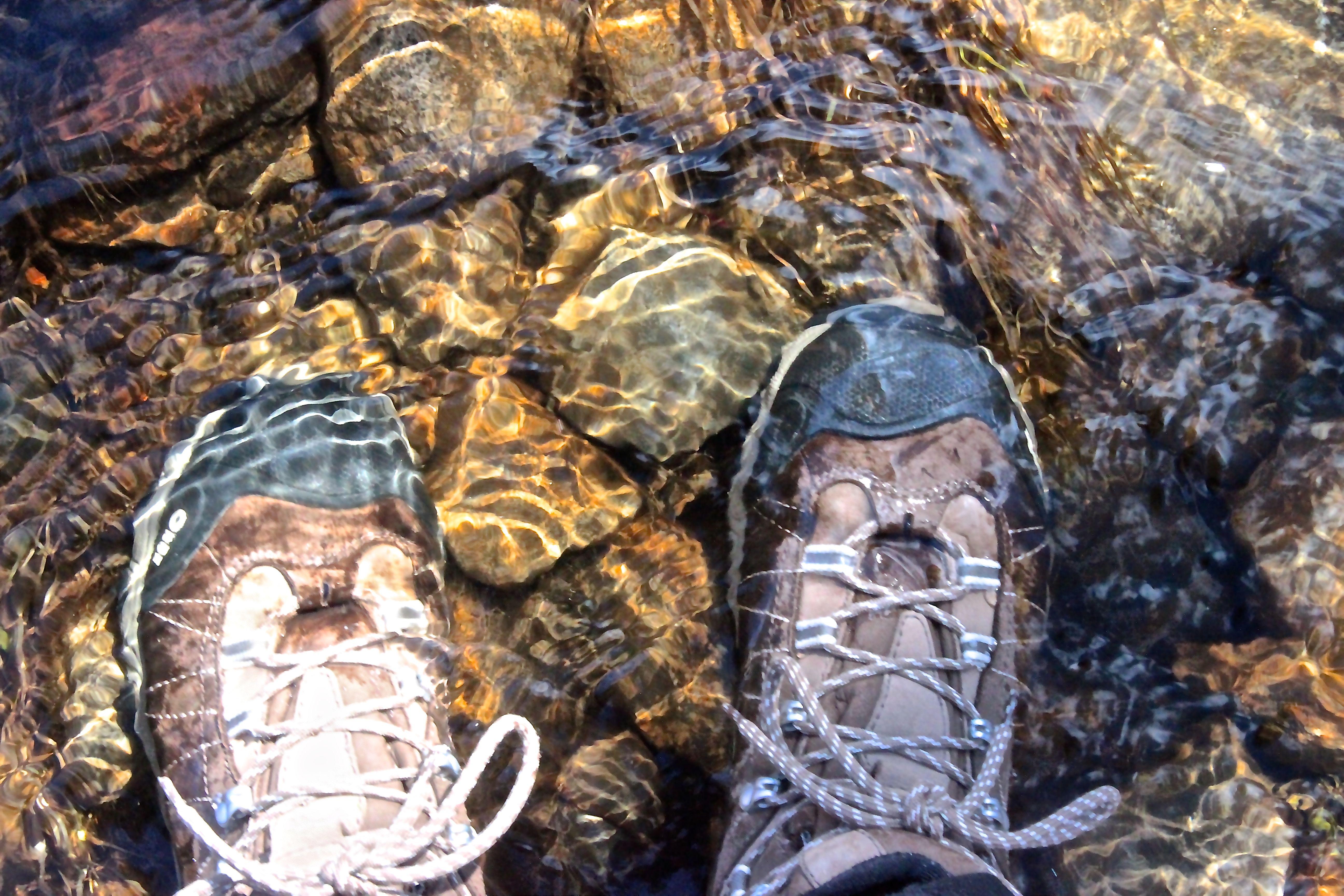 b-wet feet