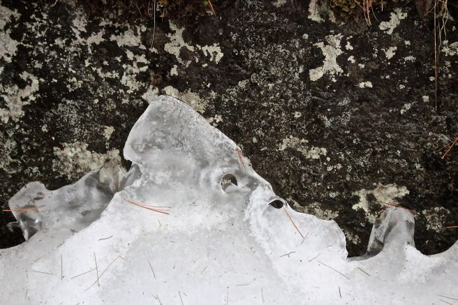 N-bishop's face in ice