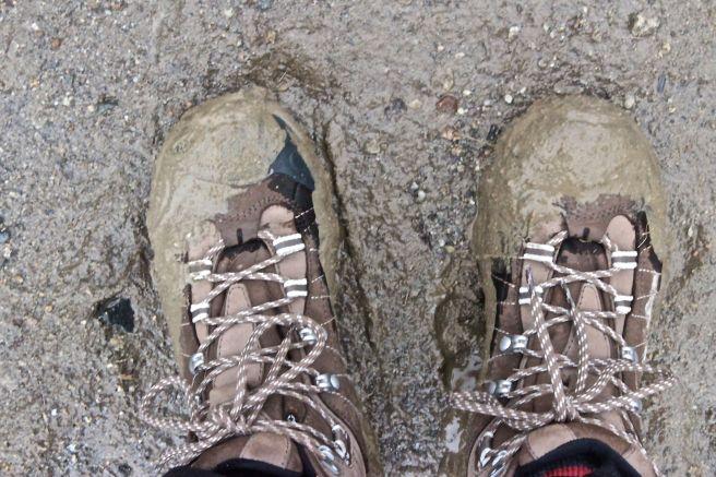 N-mud season
