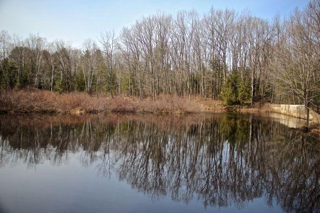 s-cmp pond