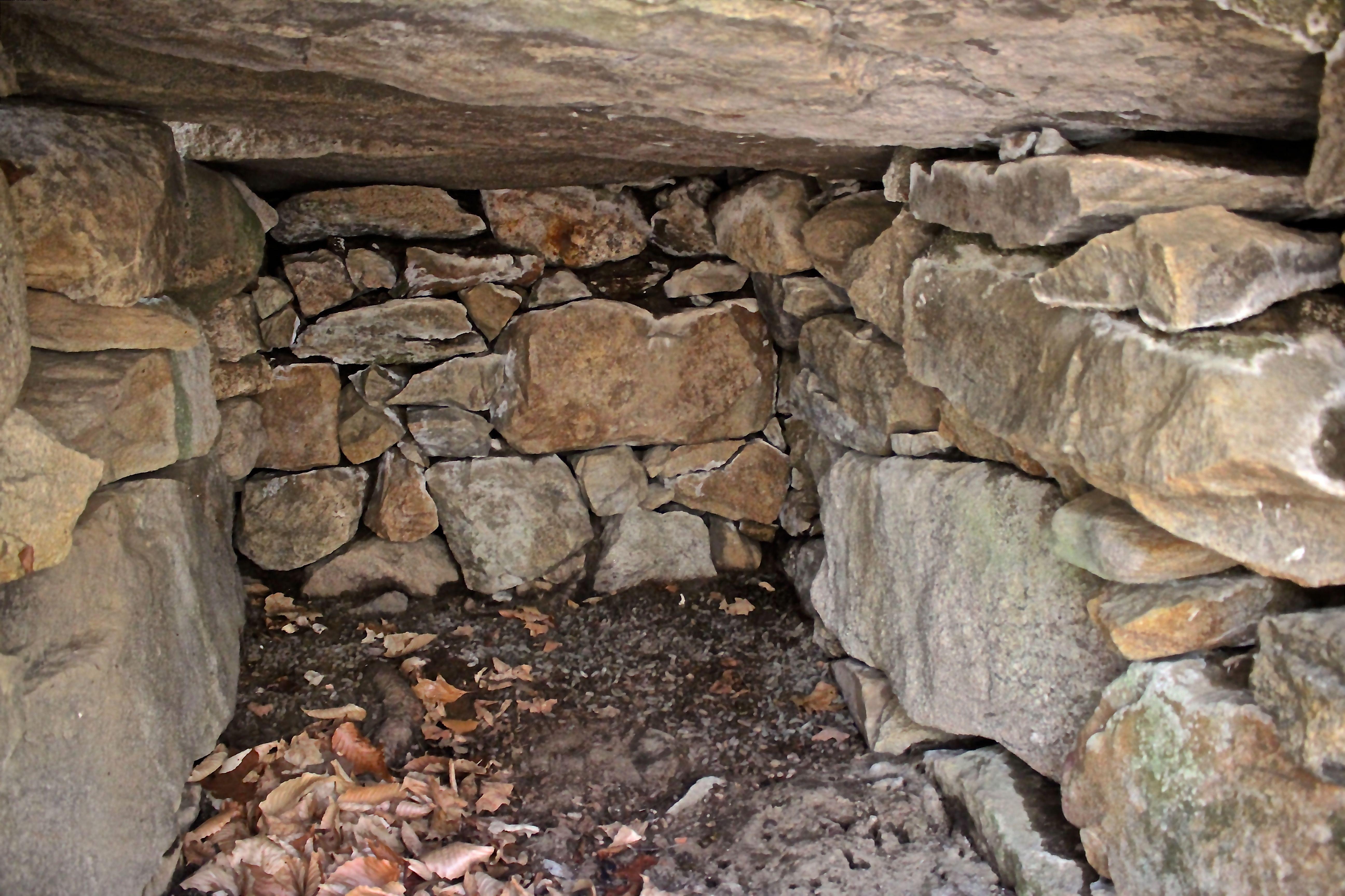 h-chamber interior