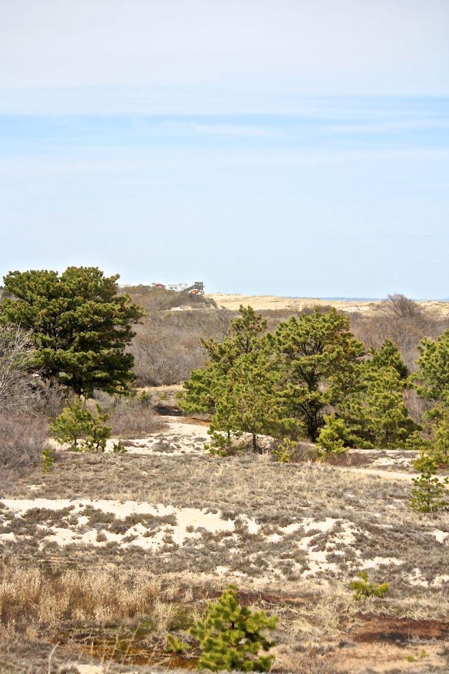 p-dunes to ocean
