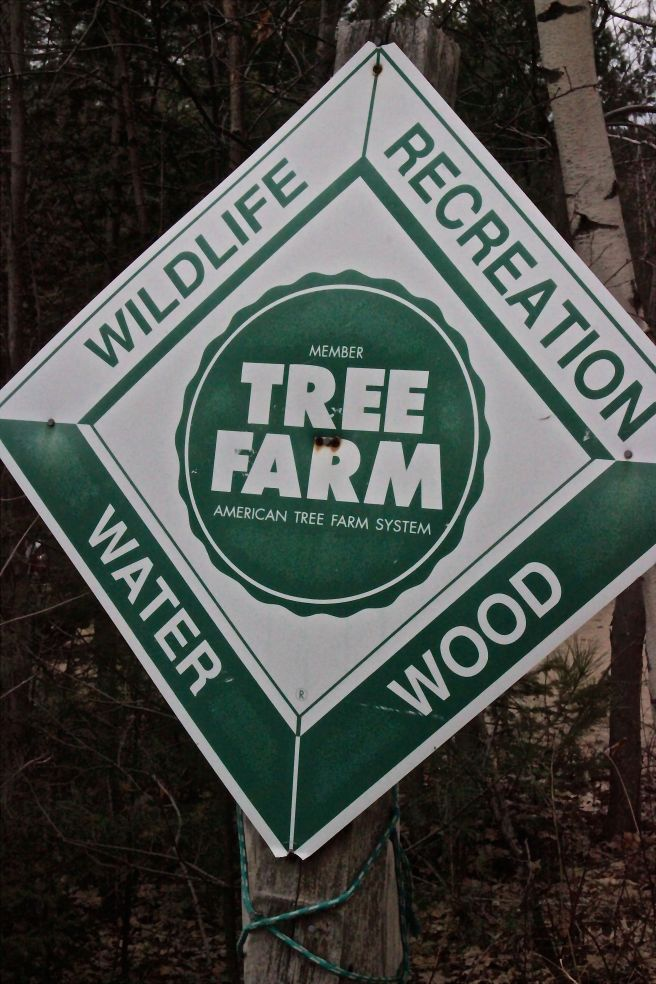w-tree farm sign